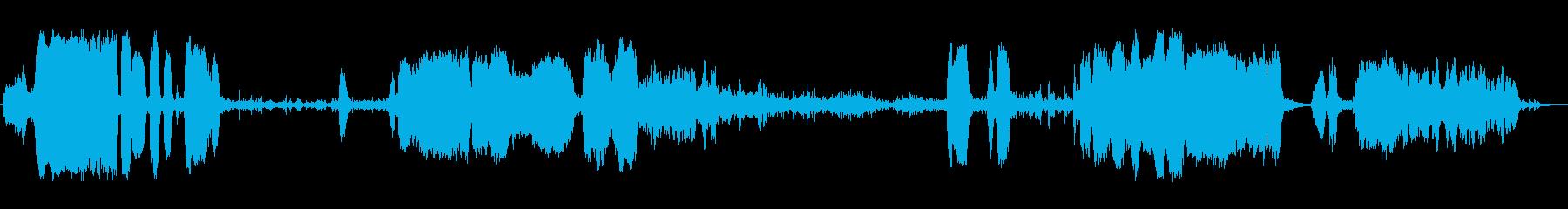 高、中空、回転する金属の鳴き声、フォリーの再生済みの波形