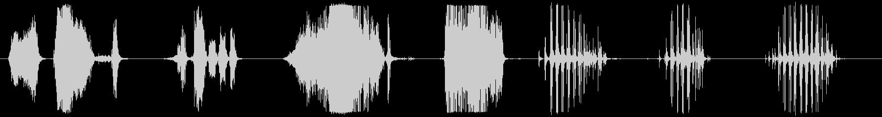 ガーニースキッドサイドウェイズ8X。の未再生の波形