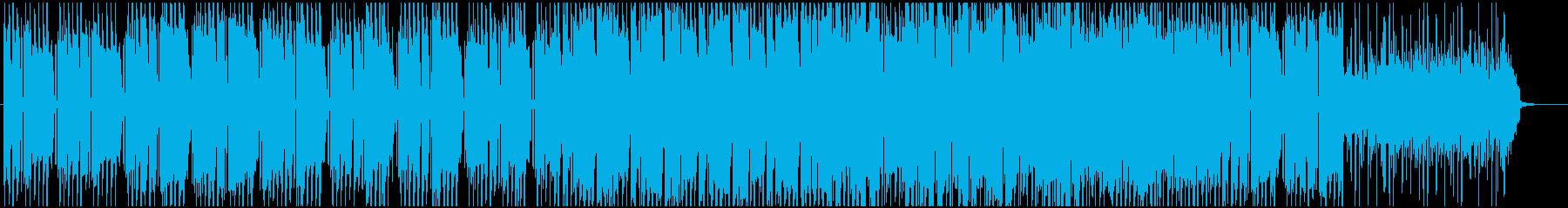 夏のリゾート地のイメージのレゲエの再生済みの波形