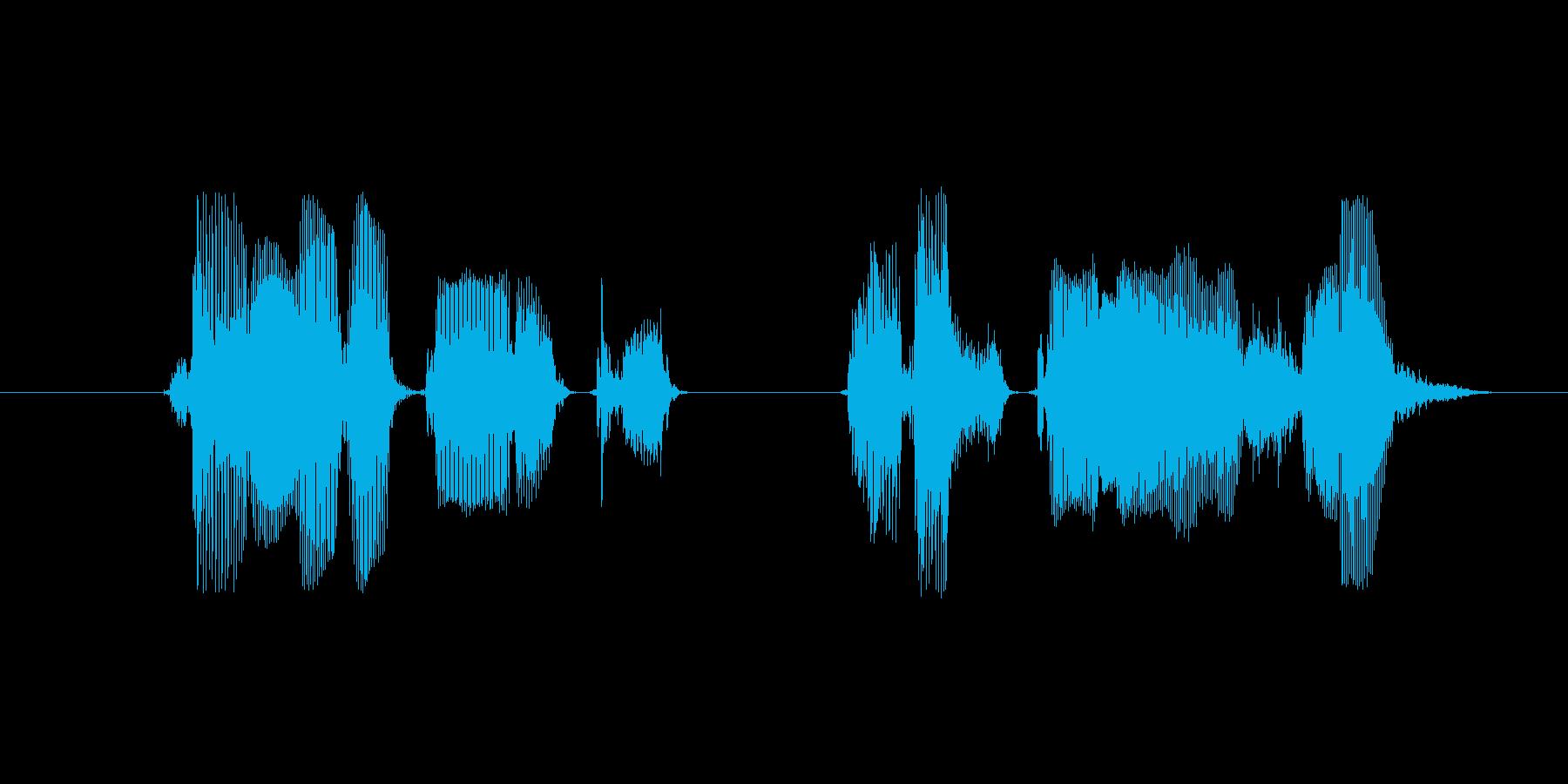 チャンネル登録よろしく…ます(女性声)の再生済みの波形
