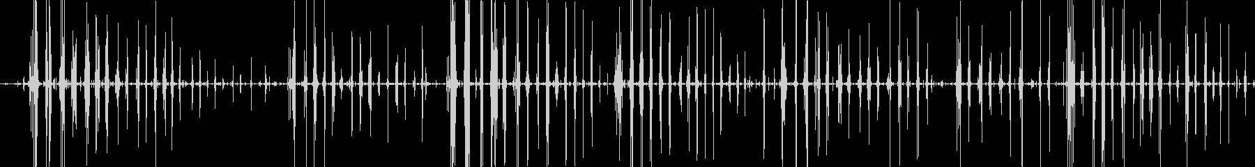 コリコリポリポリ クラゲ咀嚼音の未再生の波形