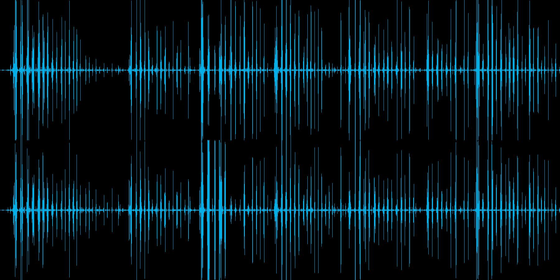 コリコリポリポリ クラゲ咀嚼音の再生済みの波形