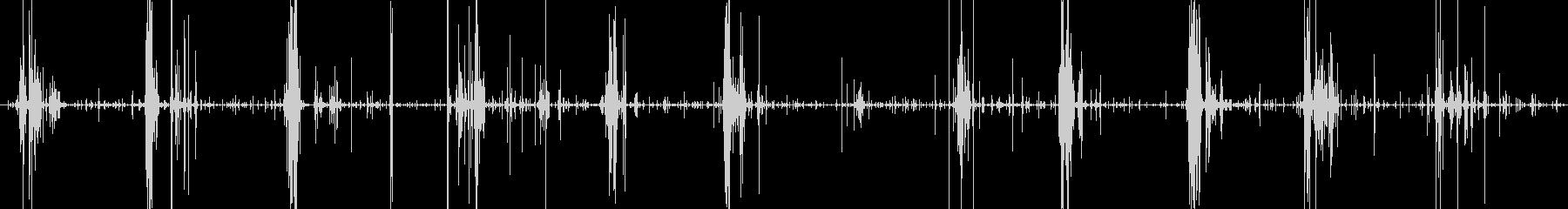 メガ焼きマシュマロ食べる音サクシュワの未再生の波形