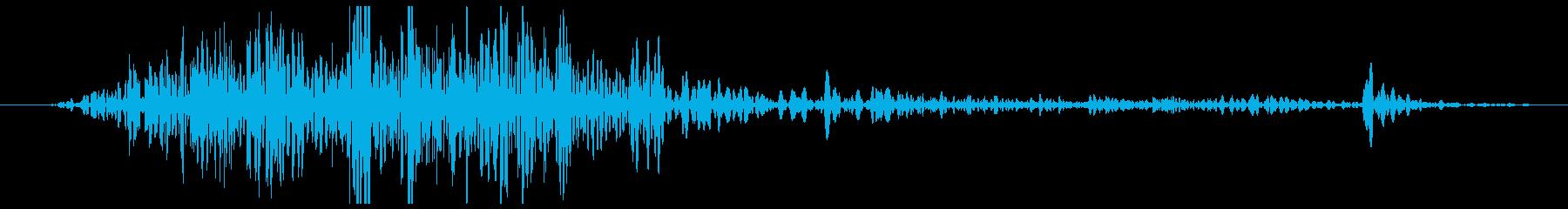 手動カッター:シングルカット、オフ...の再生済みの波形