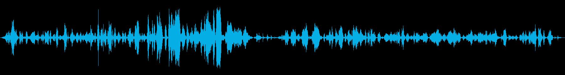 幼児:口論、叫ぶの再生済みの波形