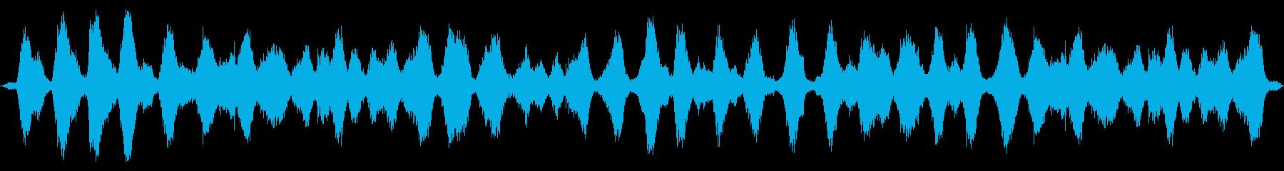 海洋:重い波、遠くのカモメに来る二重波の再生済みの波形