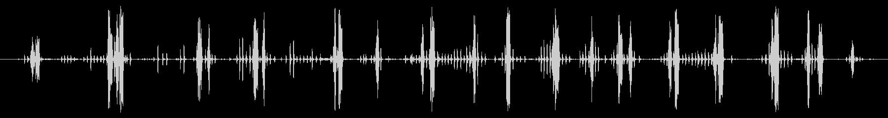 オンドリ:絶え間ない呼び出しの未再生の波形