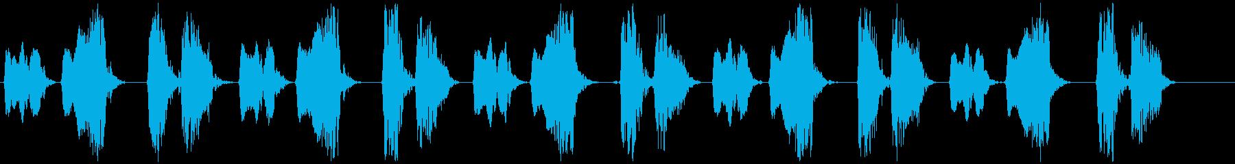 キジバト② 長め ホーホー ホッホーの再生済みの波形