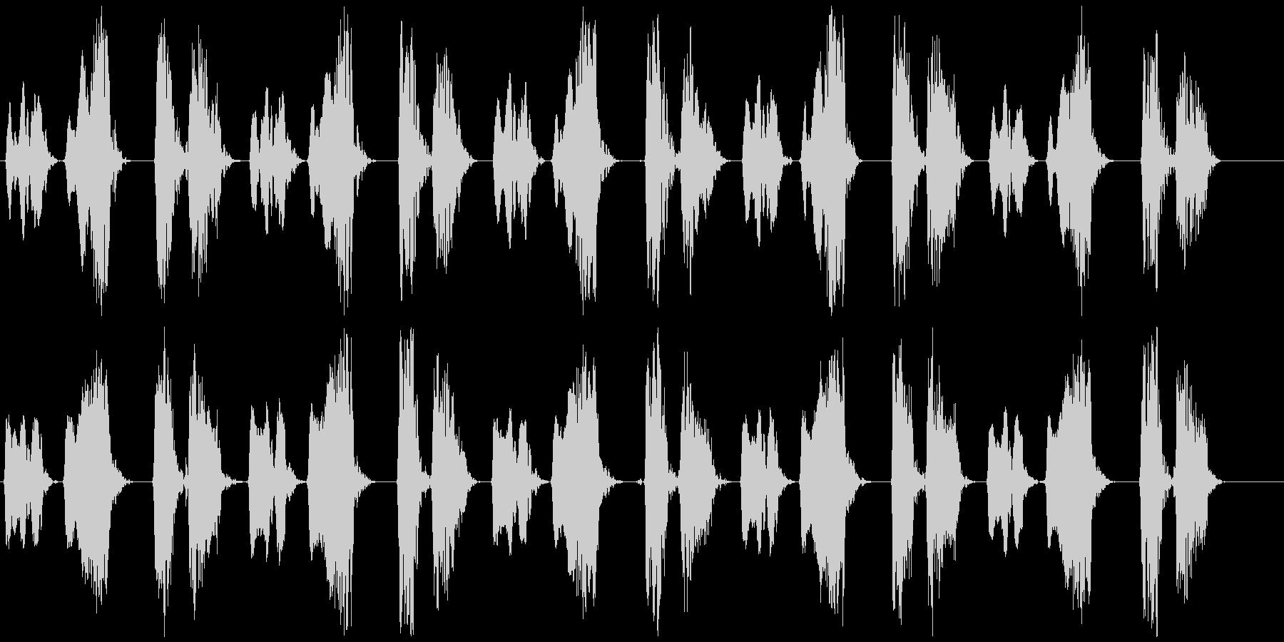 キジバト② 長め ホーホー ホッホーの未再生の波形