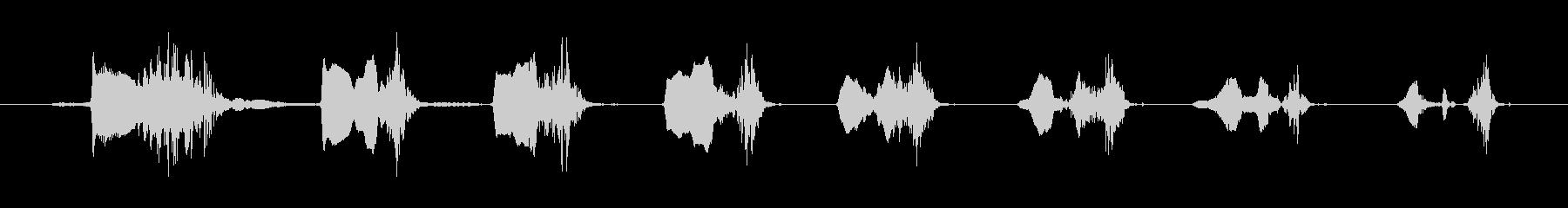 鳴き声 笑い声02の未再生の波形