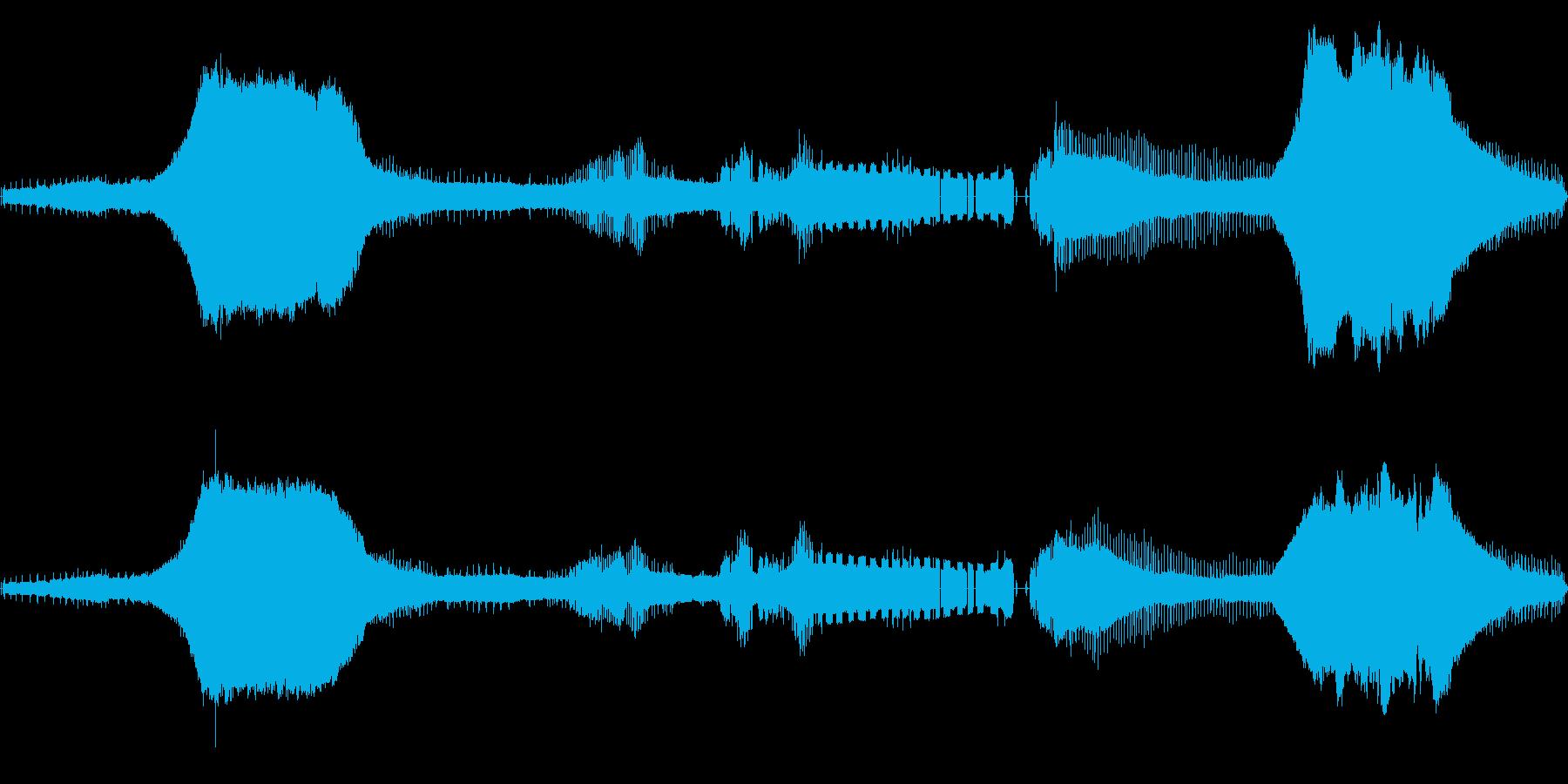 【夏】数匹のアブラゼミ(ジージー)の再生済みの波形