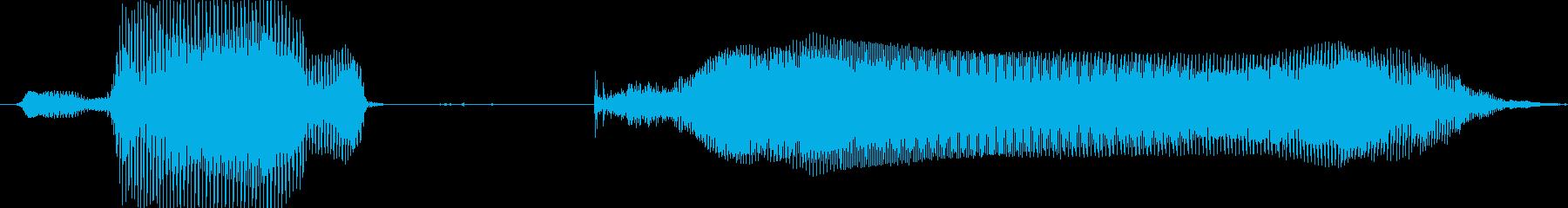 ラッキー!の再生済みの波形