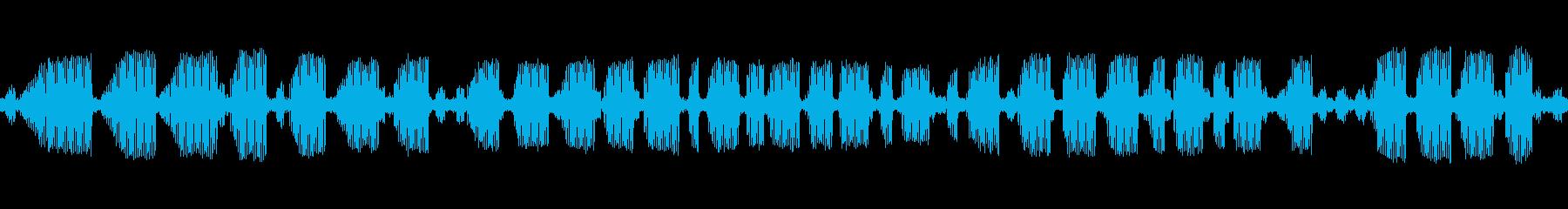 [秋の夜長] 虫の音-アオマツムシの再生済みの波形