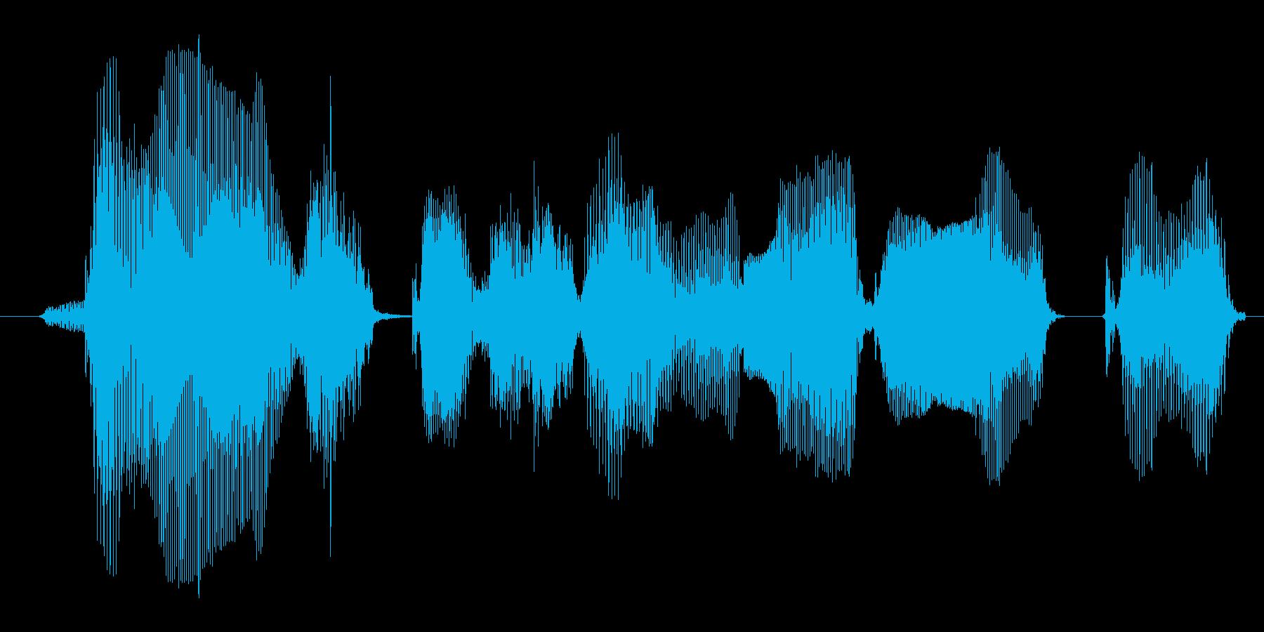 どうしてそうなるのかの再生済みの波形
