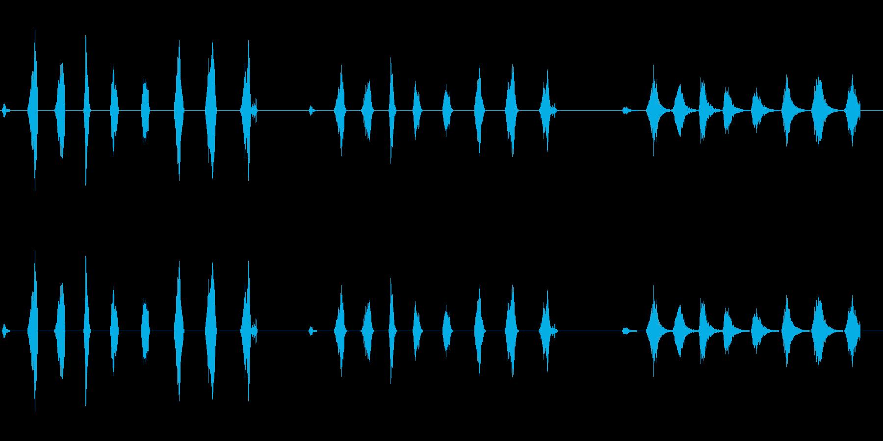 ローププル1の再生済みの波形