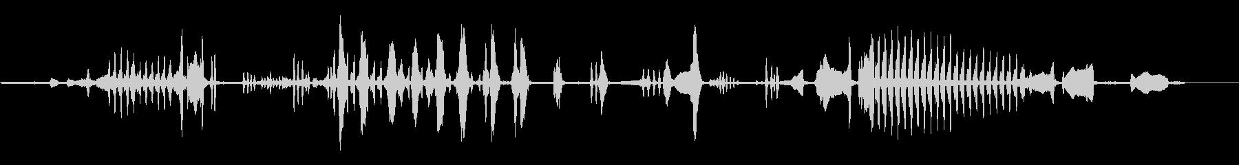 ヘリングガル、バード; DIGIF...の未再生の波形