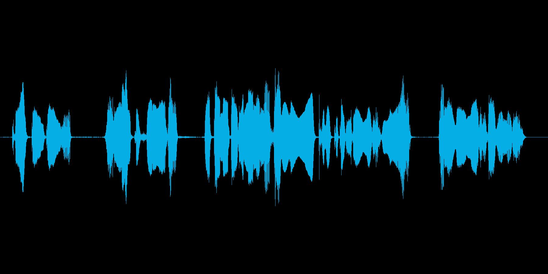 携帯電話スマートフォンなど音の出るもののの再生済みの波形