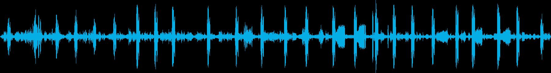 軽井沢の野鳥たち1の再生済みの波形