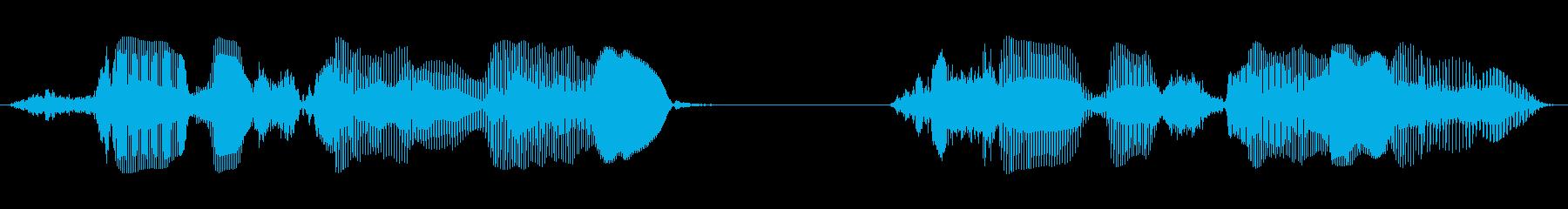 成人女性D:サービスライン1、サー...の再生済みの波形