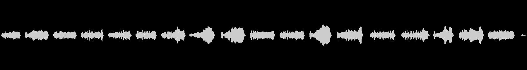 ベトナムのポットベリー:鳴き声、動...の未再生の波形