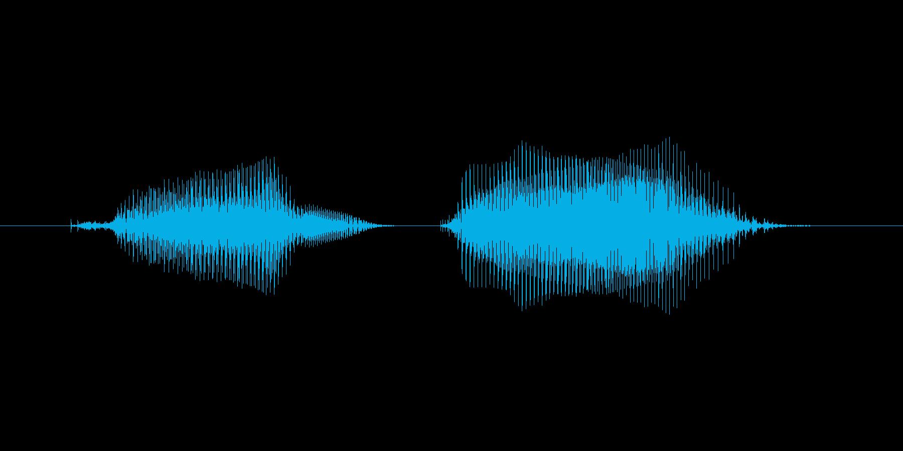 プンプン2(女性、子供)の再生済みの波形