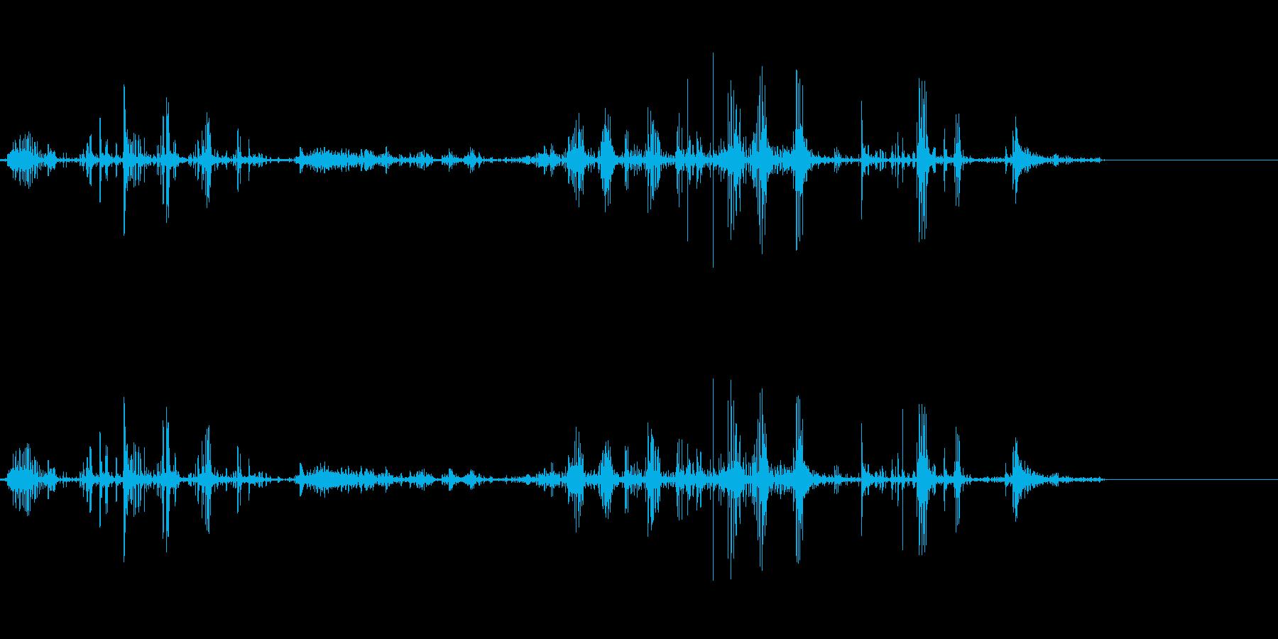 ベリベリベリベリ(物をちぎる音)の再生済みの波形