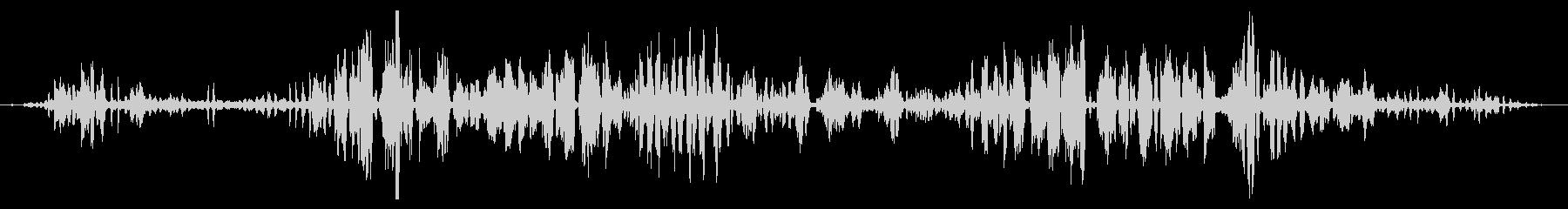 ガチョウとアヒルのグループ:ヘビーコールの未再生の波形