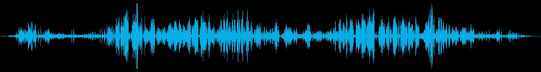 ガチョウとアヒルのグループ:ヘビーコールの再生済みの波形