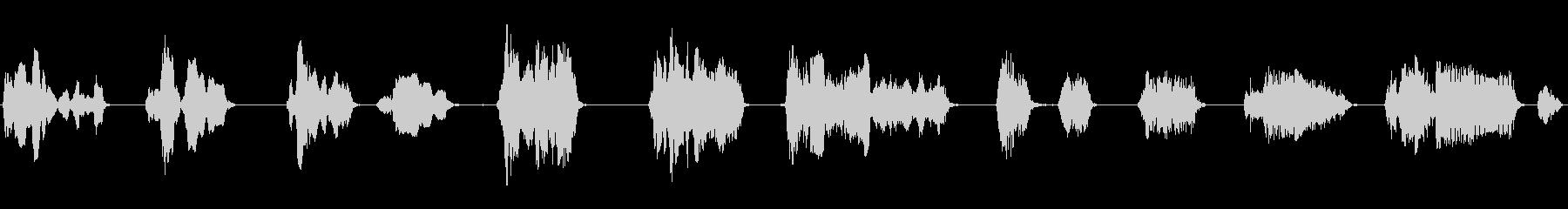 男性:大きな苦しみの声の未再生の波形