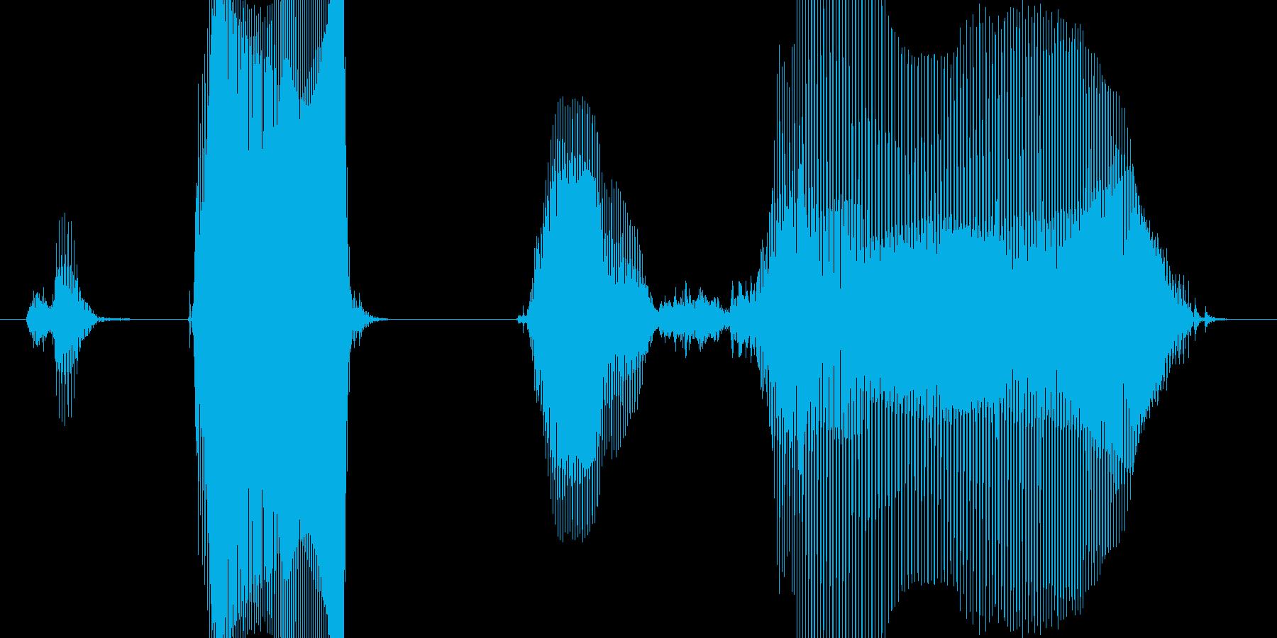 ステップ3(こども)の再生済みの波形
