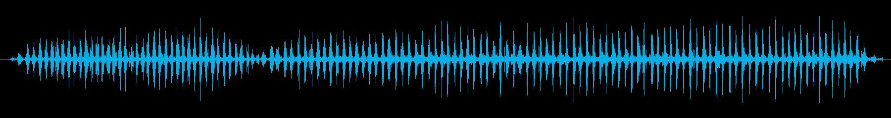 シェーカー ウッドラトルファストハ...の再生済みの波形