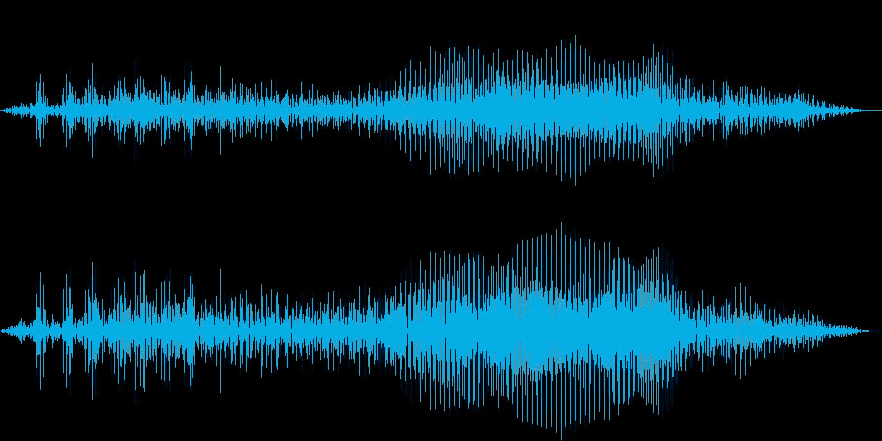 【生録音】フラミンゴの鳴き声 2の再生済みの波形