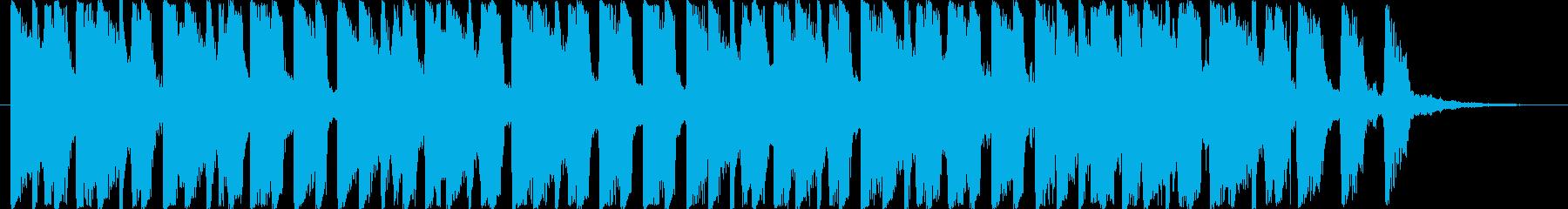 トロピカル・ヤシの実・ビーチ・海・砂・空の再生済みの波形