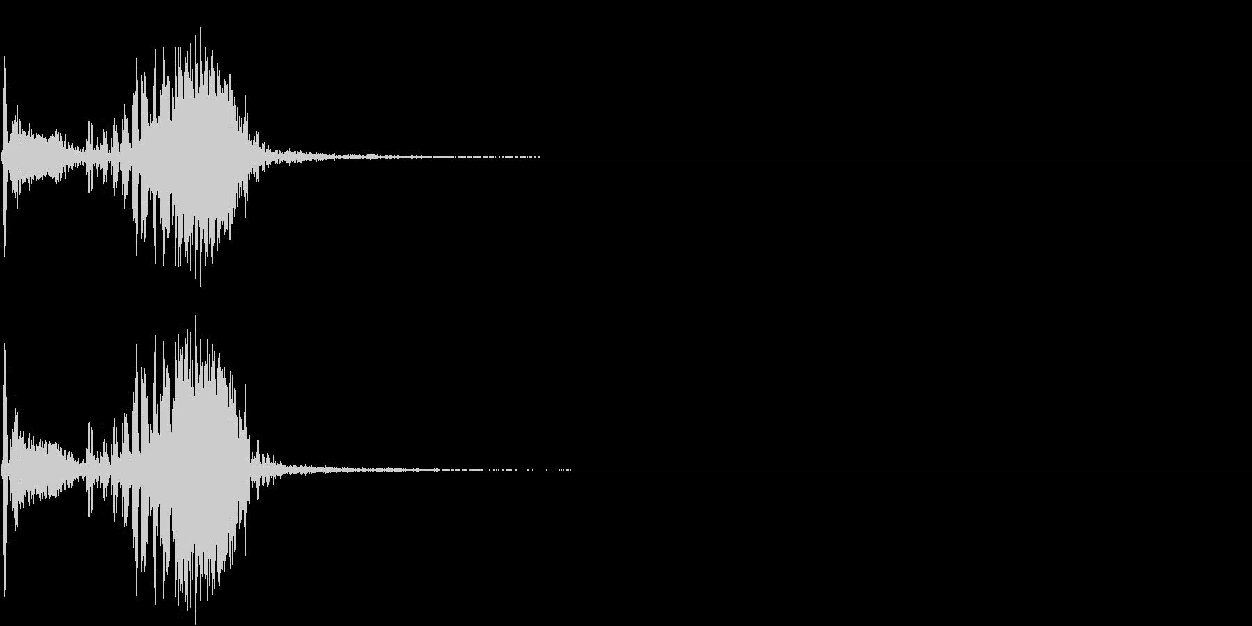 【生録音】フラミンゴの鳴き声 10の未再生の波形