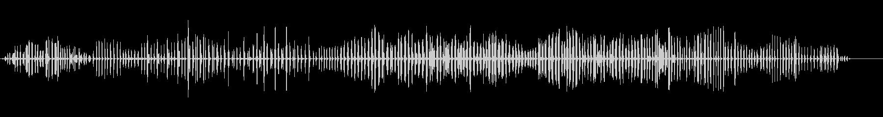 杖のウグイス-アクロセファラスシラケウスの未再生の波形