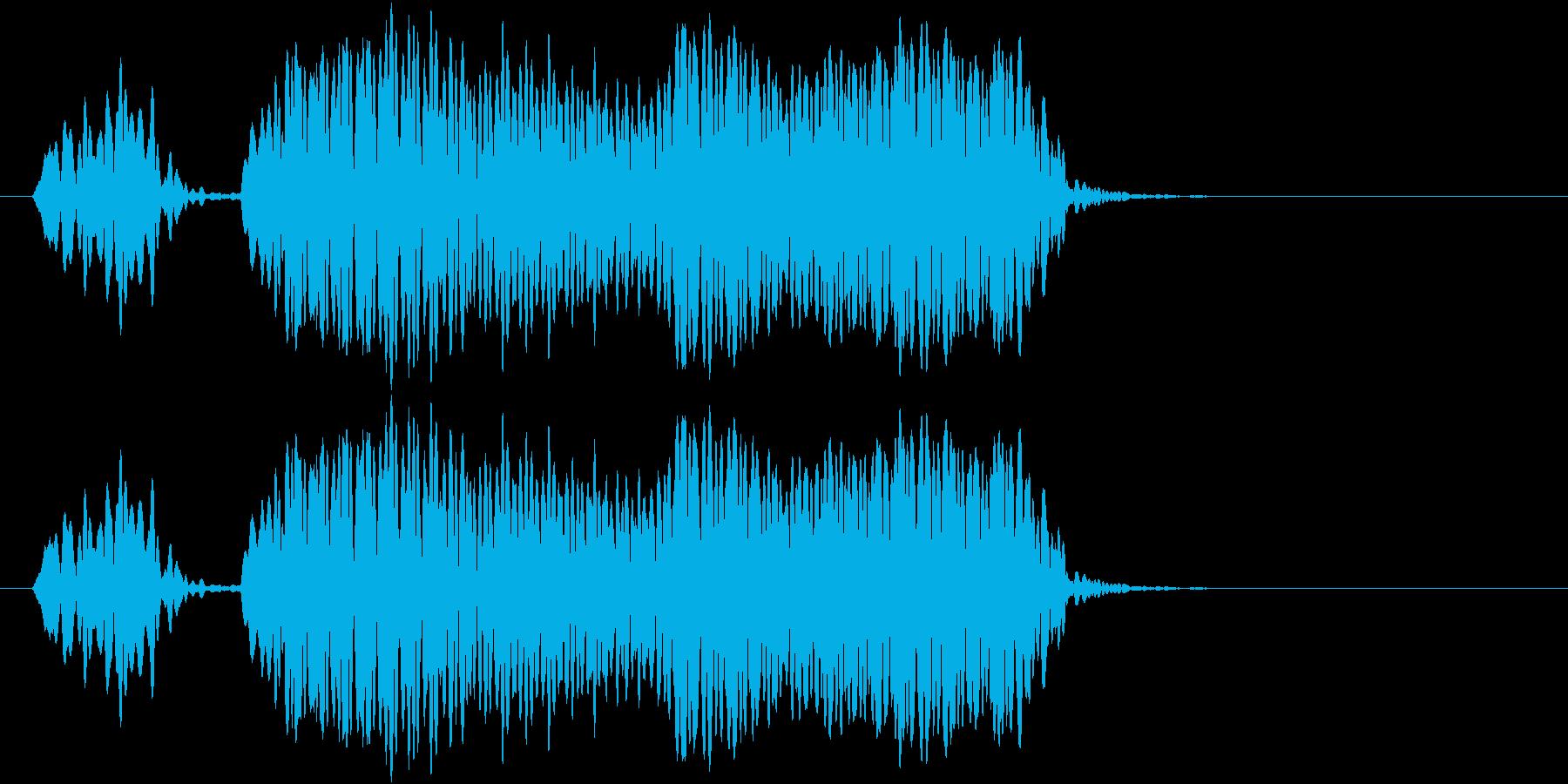ピピー(ホイッスル 信号)の再生済みの波形