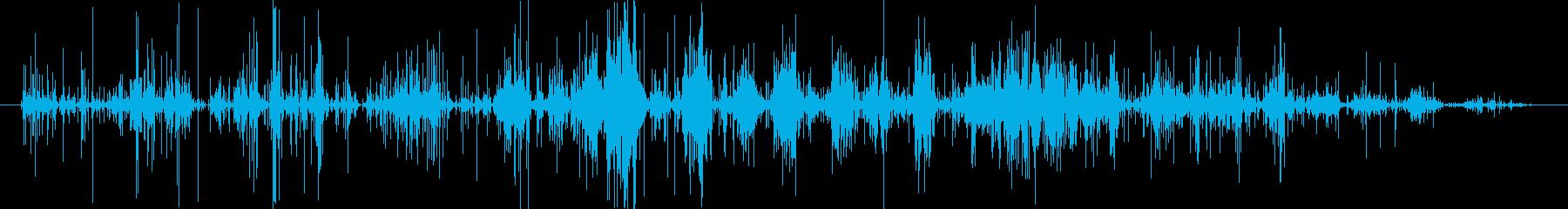インスタントラーメン潰す音 バリバリの再生済みの波形