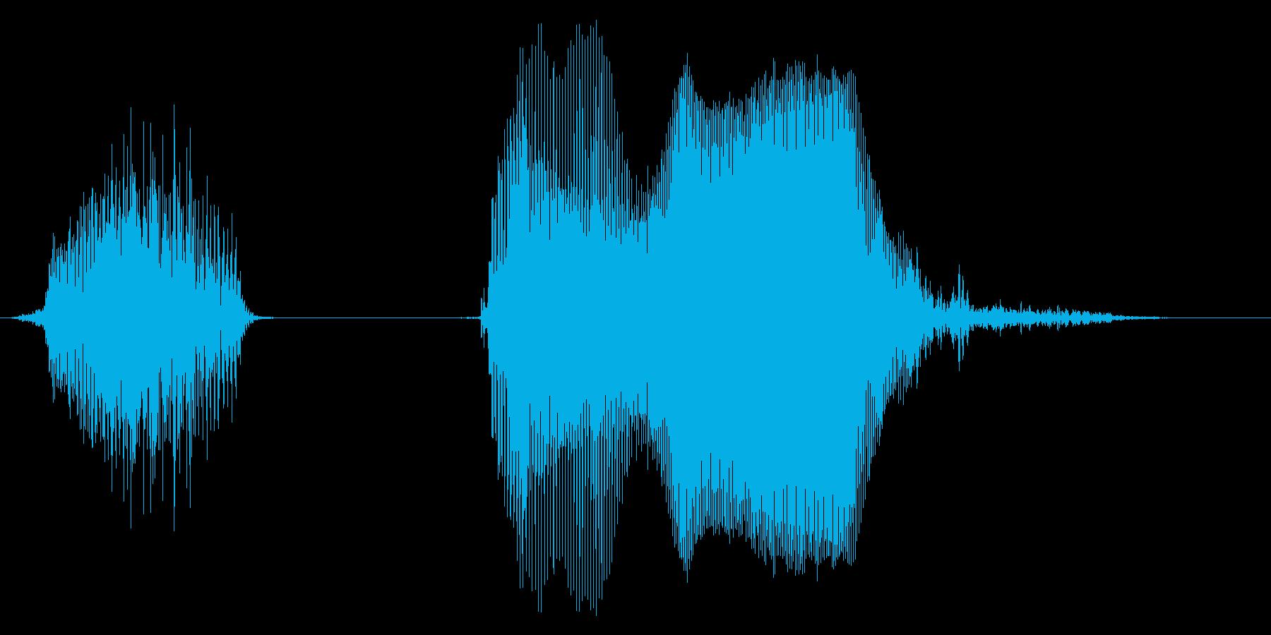 やったー!2【ロリキャラの褒めボイス】の再生済みの波形