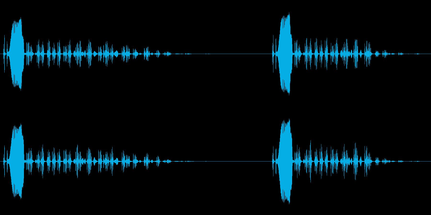 ピーヒョロロロと鳴く鳥の再生済みの波形