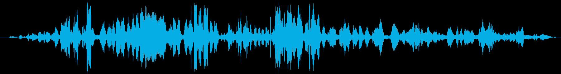 熱帯の鳥の再生済みの波形