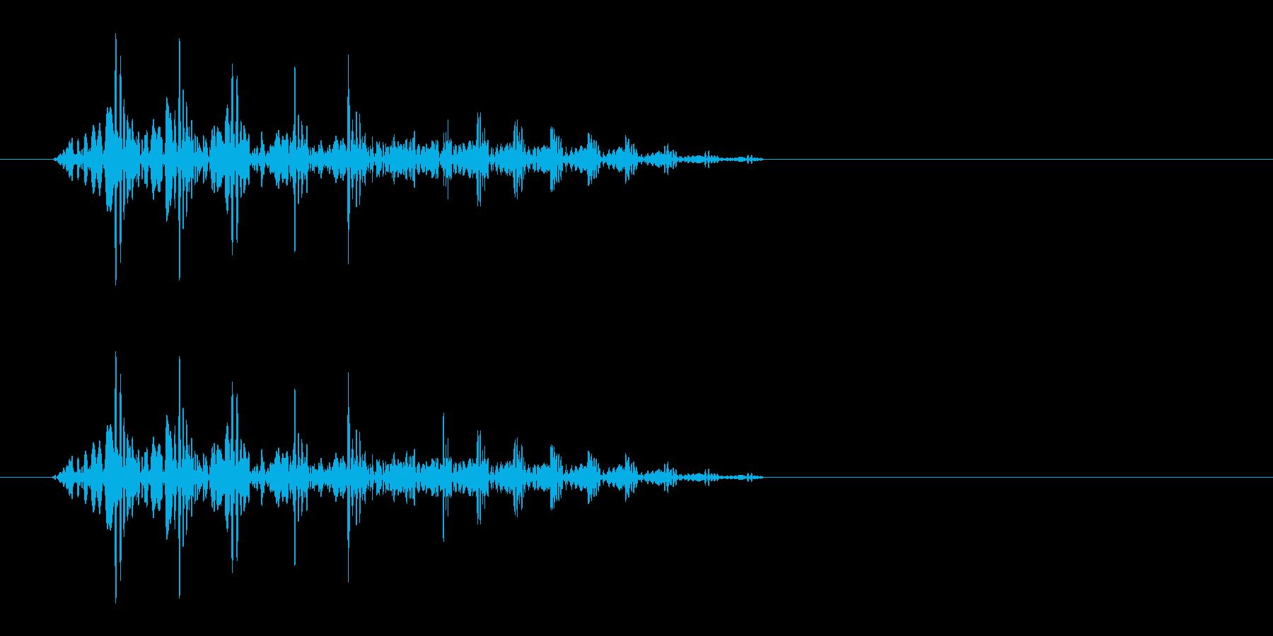 ぶたの鳴き声(ぶひっと鳴く)の再生済みの波形