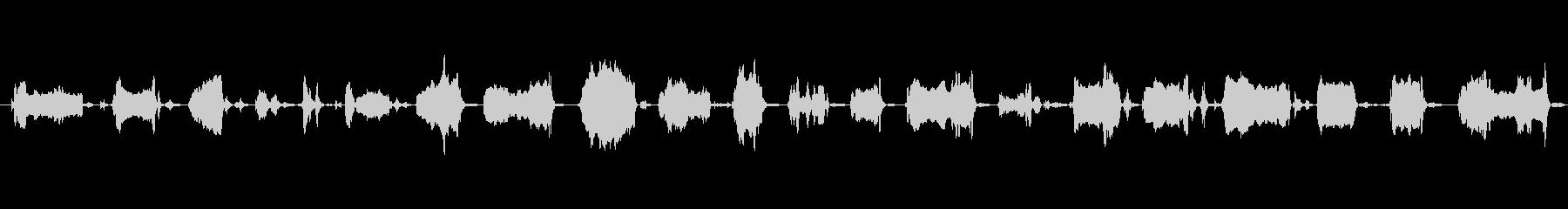 犬 GSP ワイン・ロング01の未再生の波形