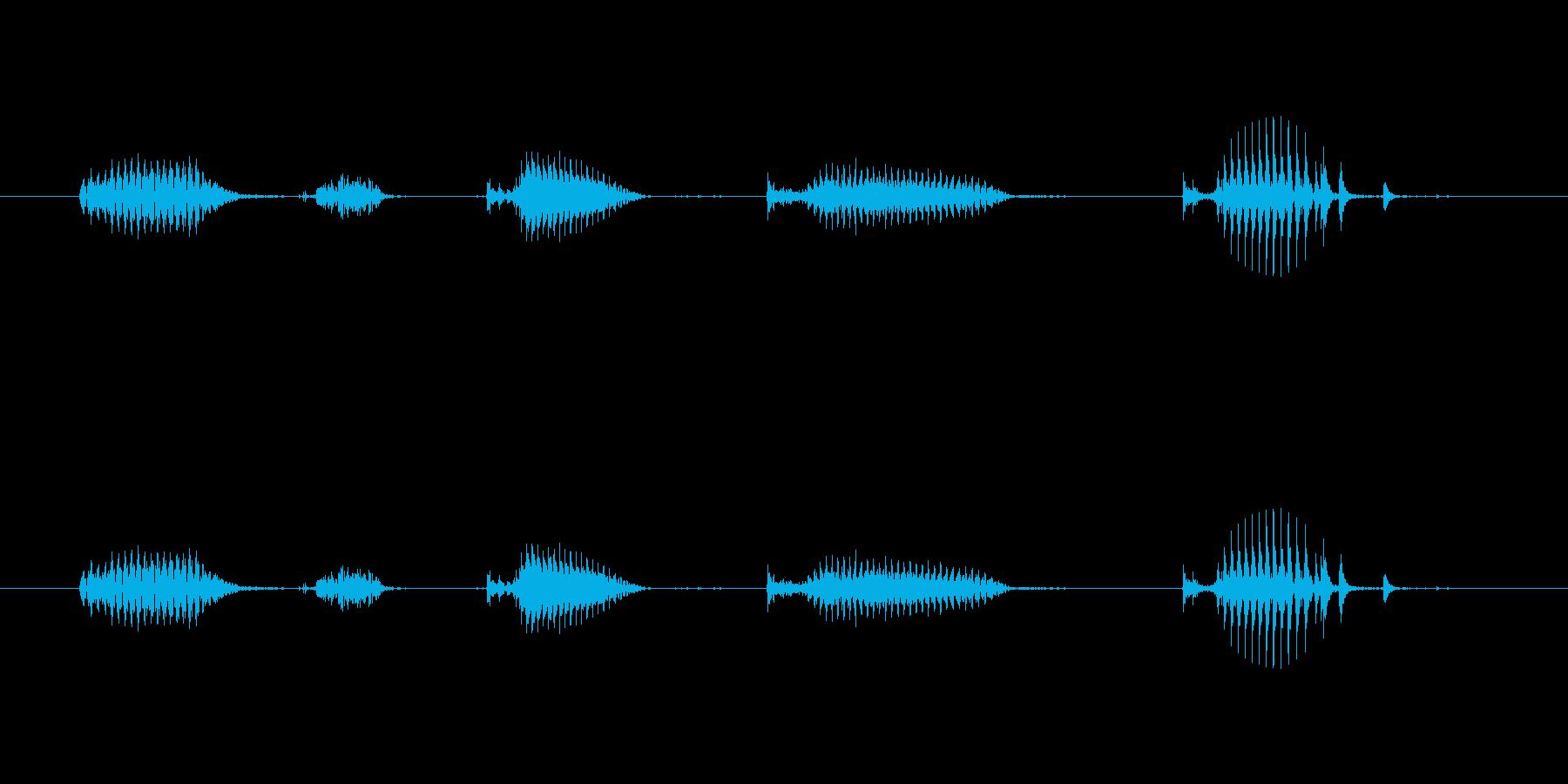 【日数・経過】5日経過の再生済みの波形
