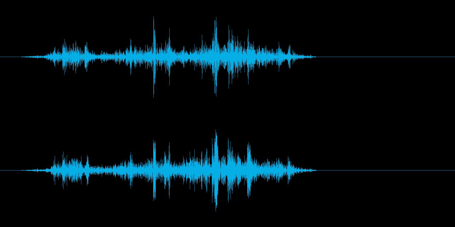 ザザッ(摩擦音)短めの再生済みの波形