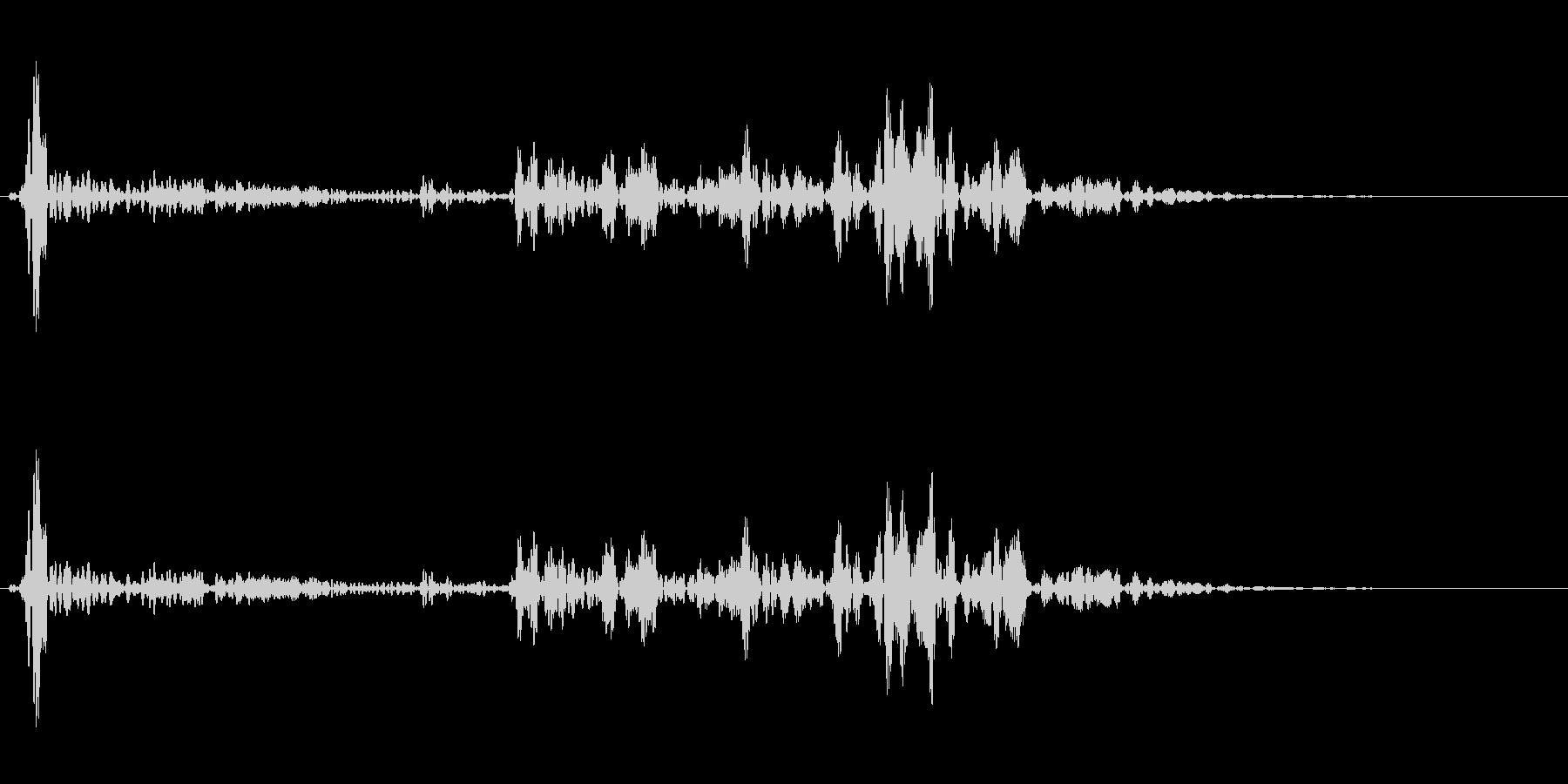 ブルォロロロ(補助魔法系SE)の未再生の波形