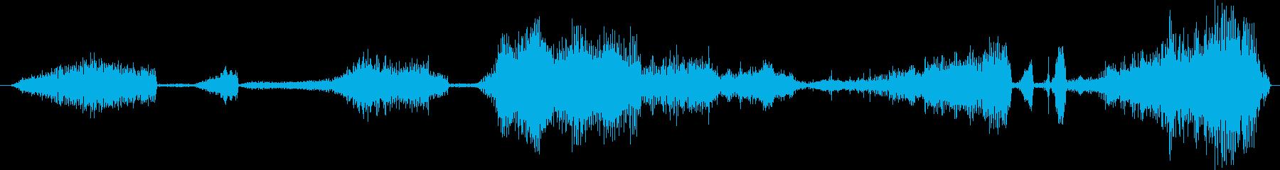 オセロットのうなり声。くしゃみ型の...の再生済みの波形