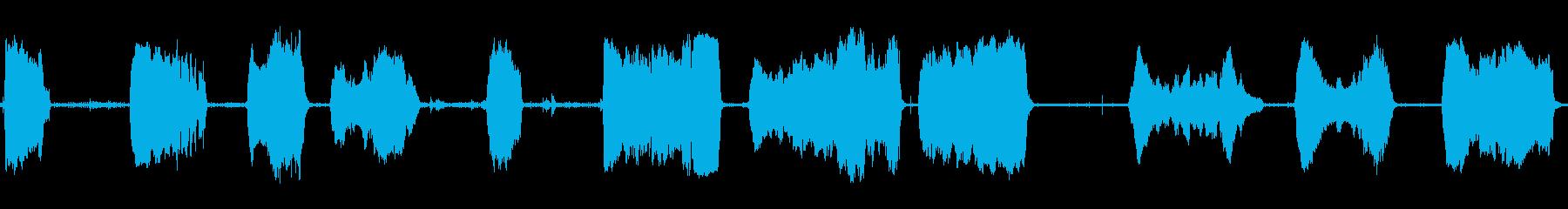 猫のハウルの危険なニャーの再生済みの波形