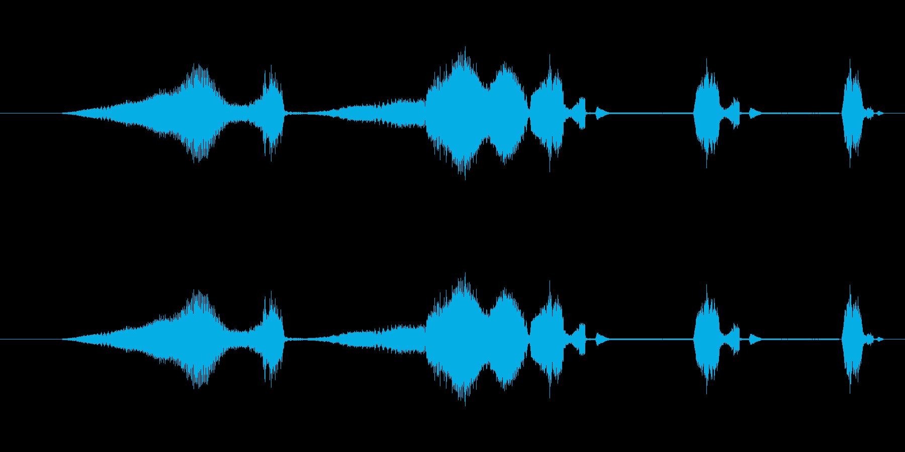 特撮 グリッチを確認01の再生済みの波形