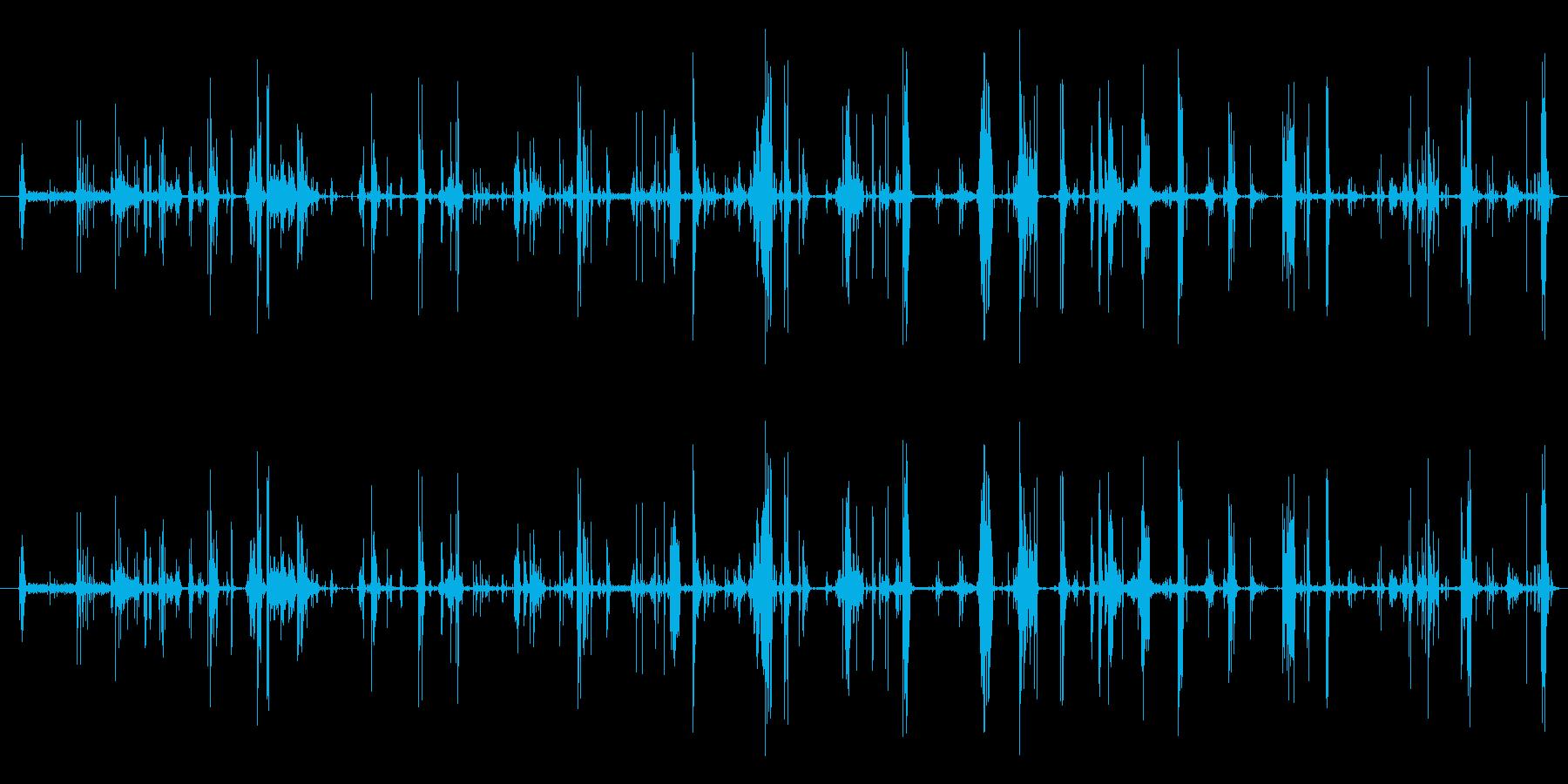 モンスター 肉食05の再生済みの波形