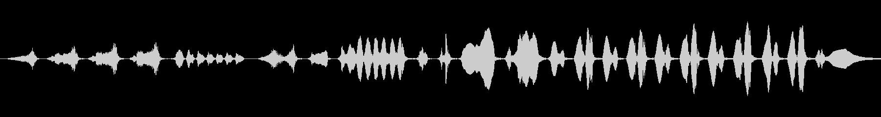 ハウスレン:シングルコール、動物の鳥の未再生の波形
